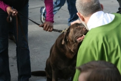 Blessing of the Animals by Fr. Charlie Fermeglia